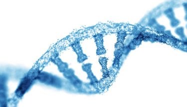 DNAシーケンシング